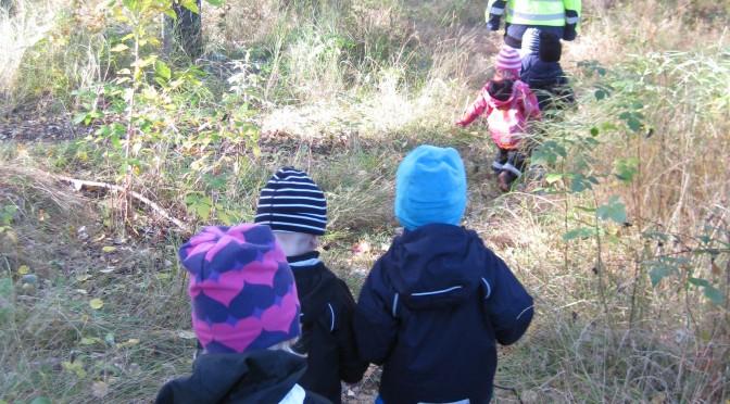 Vi utforskar skogen