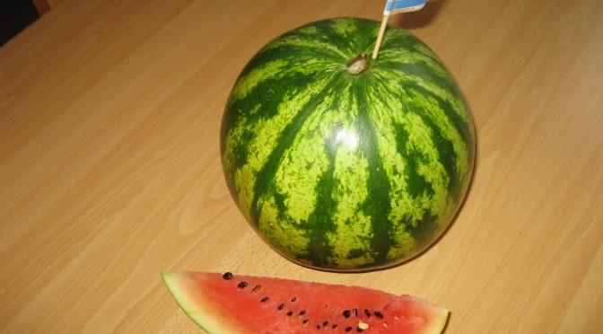 Vi utforskar Vattenmelon