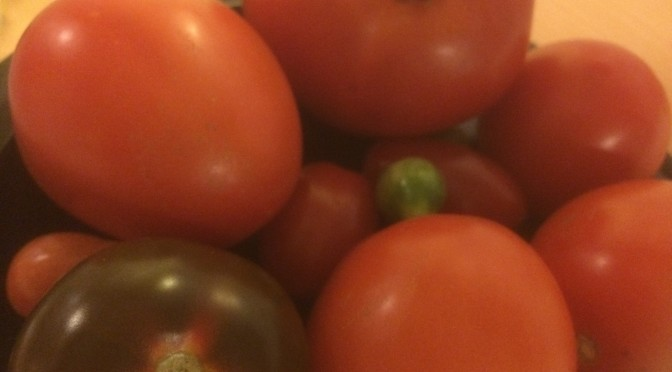 Veckans grönsak