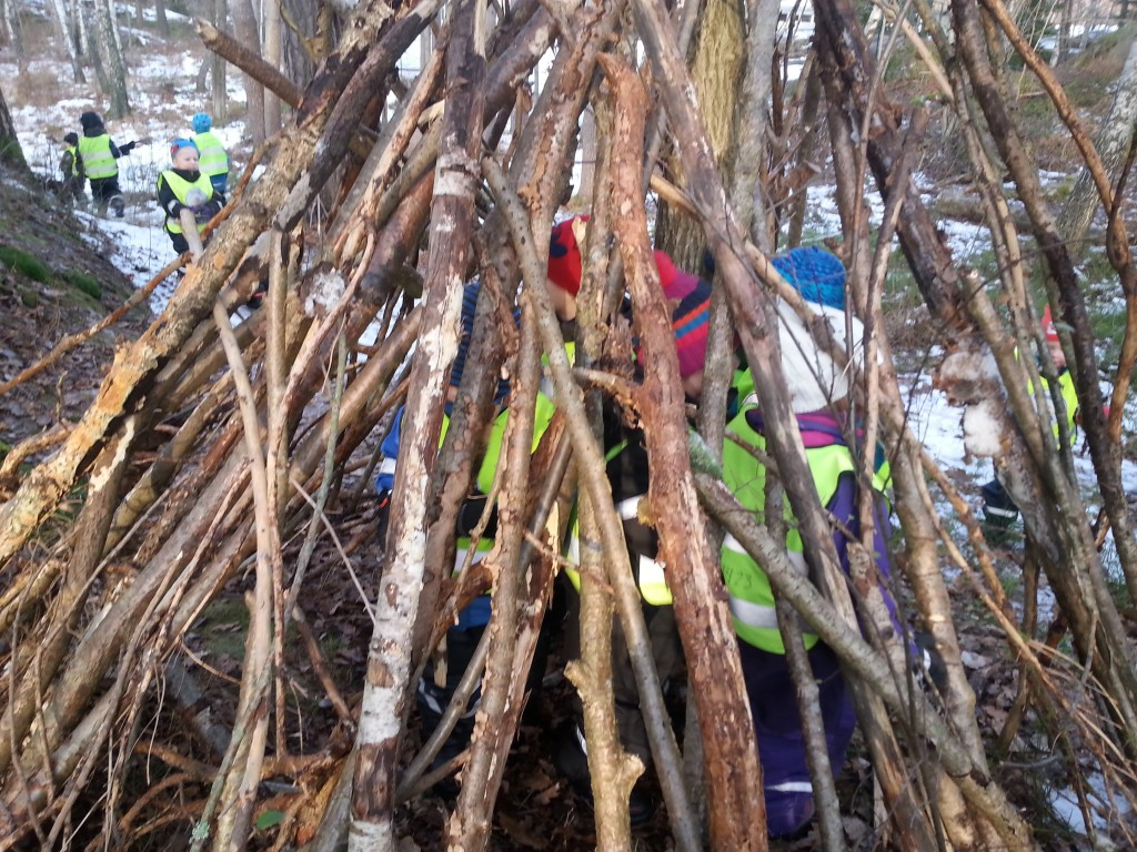 Barnen hjälptes åt och sammarbetade när de skulle få fram pinnarna till bygget. Det var måånga barn som fick plats i kojan!