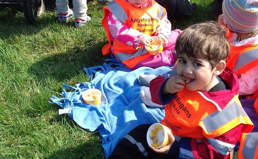 Bamseloppet och Förskolansdag!
