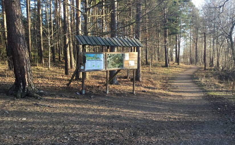 Cykeltur till skogen!