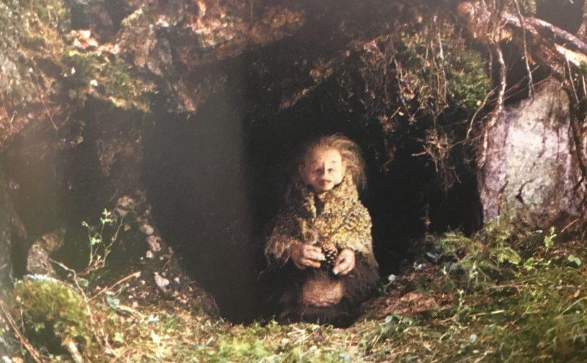 Var bor rumpnissarna? Finns det rövare i vår skog?