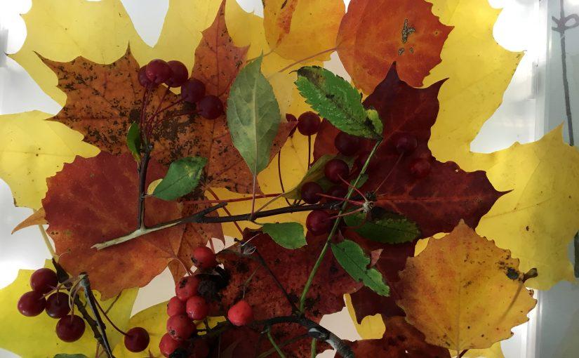 Välkommen hösten