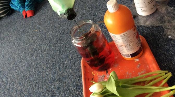 Vi fortsätter att experimentera med färg och tulpaner
