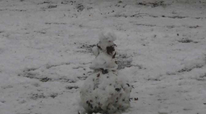 Ja se det snöar, ja se det snöar det var ju roligt HURRA!!