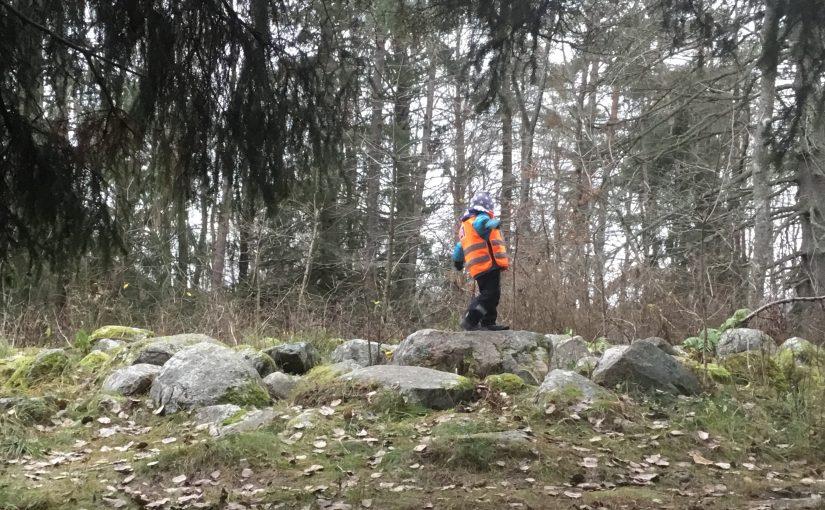 En förmiddag i Skolskogen